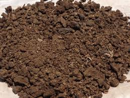 Powder Cow Dung Compost